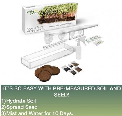 Kit per micro giardino a ventosa su Amazon