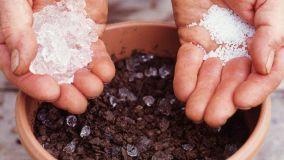 Irrigare le piante in modo semplice con il gel idroretentore
