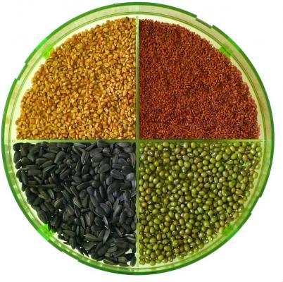 Diversi semi per germogli