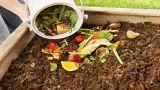Compost: come farlo in casa
