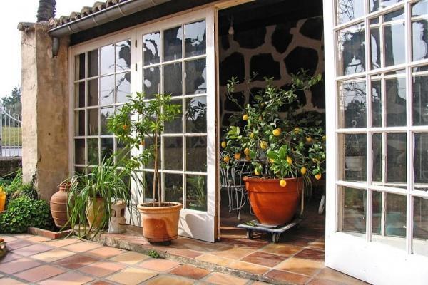 I giardini invernali per la cura delle piante