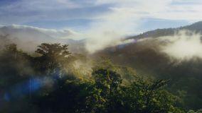 Lifetime Carbon Neutral, il progetto di VELUX e WWF per ridurre l'impatto ambientale
