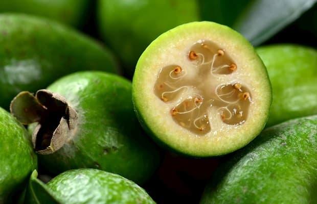 Frutto di Feijoa