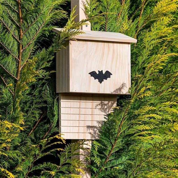 Batbox per pipistrelli su Amazon qui installata in mezzo al verde