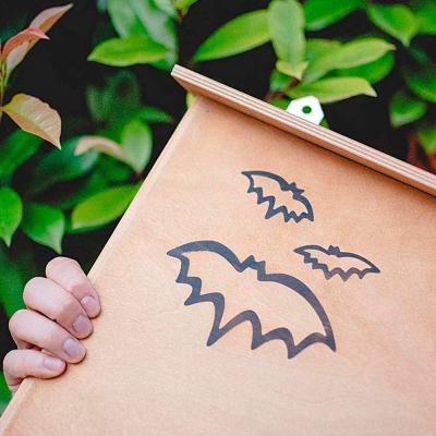 Casetta per pipistrelli su Amazon