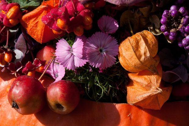 Fiori per comporre zucche fiorite ornamentali