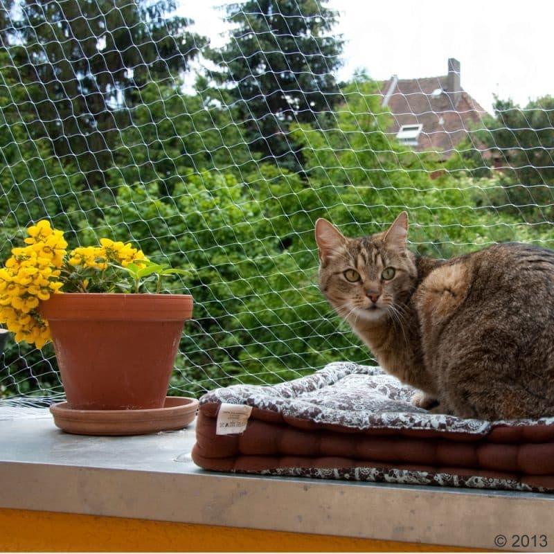 Rete protezione balcone per gatti, da zooplus.de