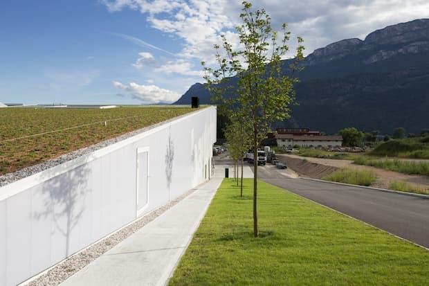 Guaine impermeabilizzanti green roof Polyglass
