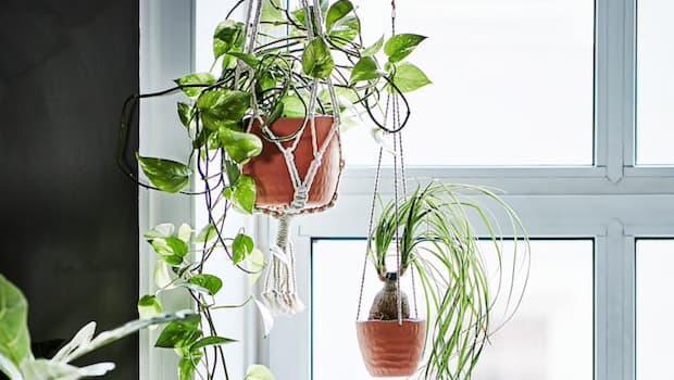 Vasi Ikea Botanisk - Foto by Ikea