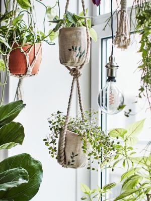 Vasi e fioriere sospese Ikea Botanisk - Foto by Ikea