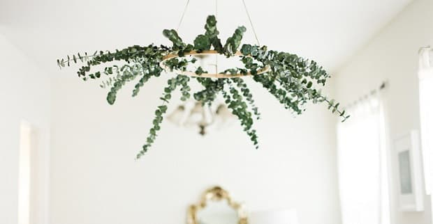 Corona di eucalipto in casa, da bloglavalsedamelie.com