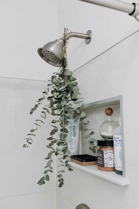 L'eucalipto in bagno, da apartmenttherapy.com