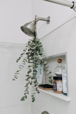 Eucalipto in bagno, da apartmenttherapy.com
