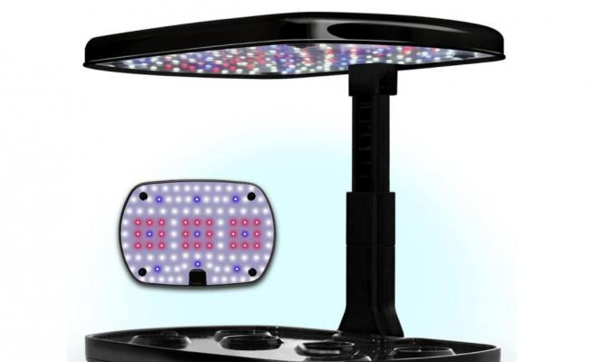 Le luci a LED integrate del kit Aerogarden