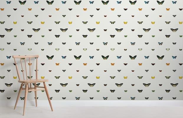 Carta da parati farfalla by Muralswallpaper