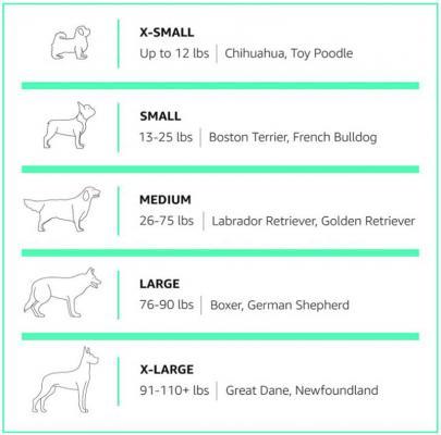 Tabella taglie dei cani
