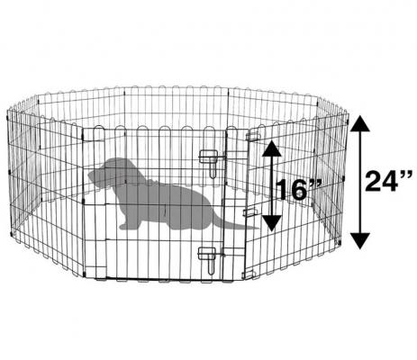 Box per cani amazonBasic