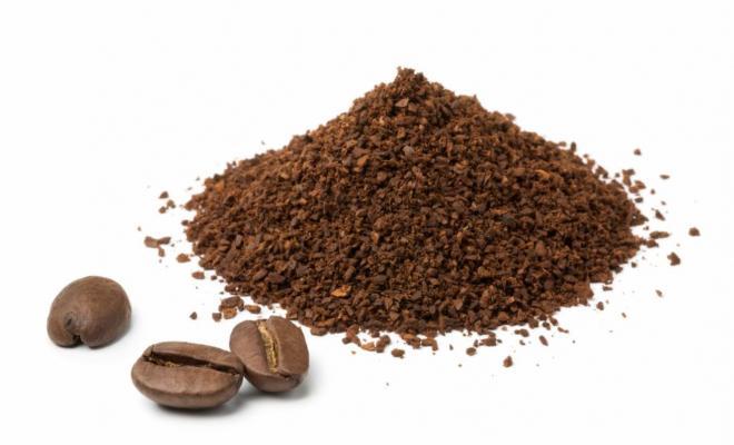 Caffè essiccato in polvere