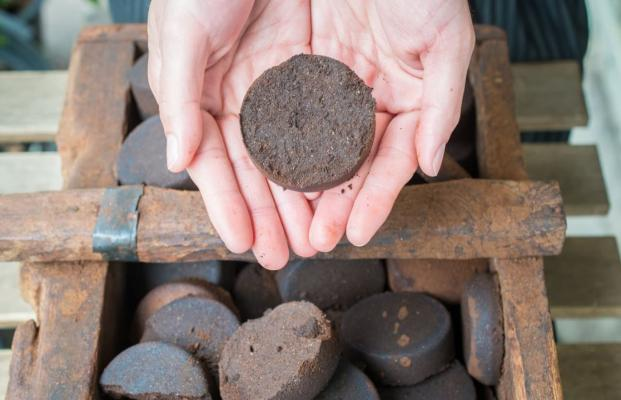 I fondi di caffè prima di essere usati vanno essiccati in forno