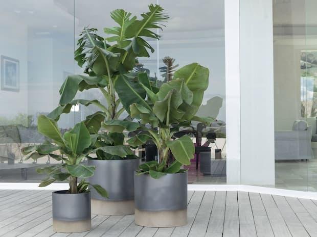 Vasi per esterno, in ceramica, Palm beach, Pot à Porter