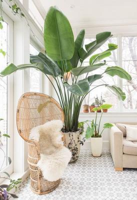 I materiali sono quelli naturali come il legno e il rattan - Pinterest