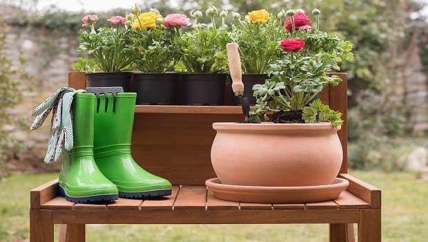 Idee per giardino con i consigli della garden designer