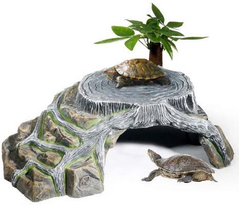 Piattaforma Omen per tartarughe