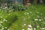 La naturalezza del meadow garden, da tumblr.com