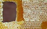 Cera d'api naturale, un ingrediente degli stucchi per legno tradizionali