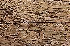 Legno con numerosi fori di sfarfallamento di tarli