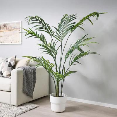 Fejka, pianta artificiale di Ikea con vaso da interno-esterno Kentia forsteriana