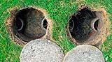 Fossa biologica aperta