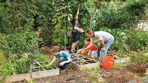 Come creare un piccolo orto con lo Square Foot Gardening