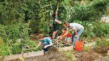 Square Foot Gardening: un orto in 30 cm
