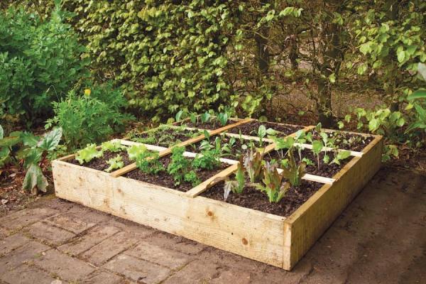 La scatola 3x3 Square Foot Gardening per spazi piccoli