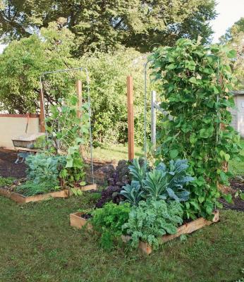 Square Foot Garden con tralicci