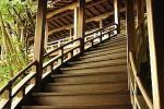Il legno è un materiale da sempre impiegato in edilizia - Pinterest