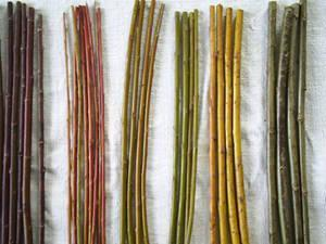 Salice intrecciato for Rami di salice