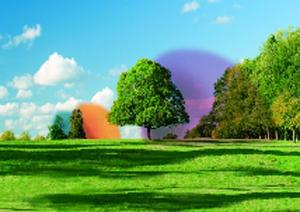 giardino bioenergetico_1