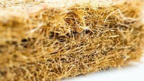 La fibra di cocco è un ottimo isolante naturale