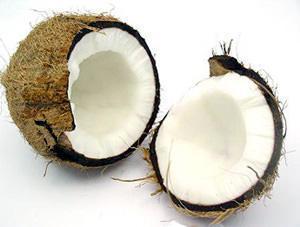 fibra da noce di cocco