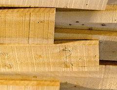 legno_materiali da costruzione (2)