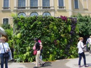 muro vegetale_Orticola 2010