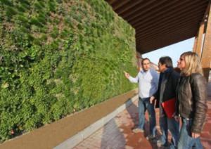 muro vegetale_Fiordaliso