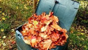Compost di foglie e scarti domestici