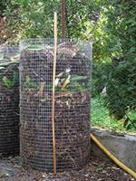 composter _ cumulo di foglie ( foto ok-ambiente.com)