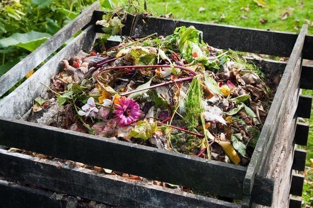 Compost di scarti domestici e foglie