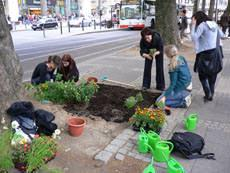 guerrilla gardening in azione 2 (foto guerrillagardening.it)