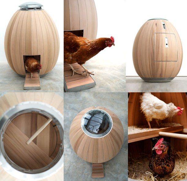 Nogg, il pollaio domestico le sue funzionalità