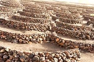 Muretti a secco in pietra naturale